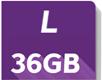 l 36GB